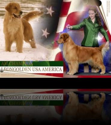 La nostra America proclamata Campionessa Americana